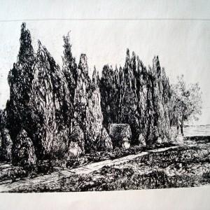 University Botanic Garden - Balchik